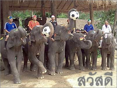Thailand-Soccer