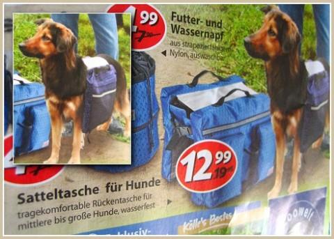 Hundesatteltasche1