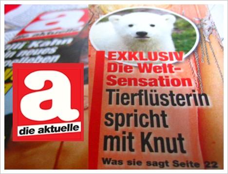Knut-Interview