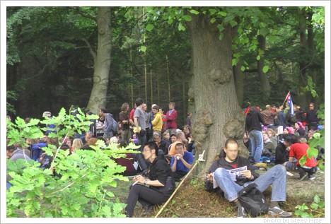 G8-Im-Wald