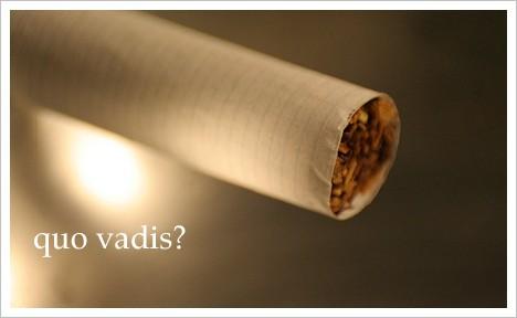 Rauchverbot-quo-vadis