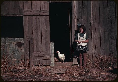 Amerika-1940es-14
